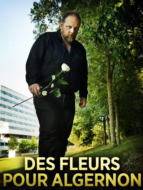 Des Fleurs pour Algernon |