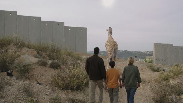 girafada-giraffada-23-04-2014-4-g.jpg