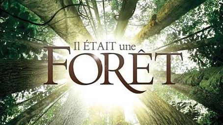 IlEtaitUneForet_32
