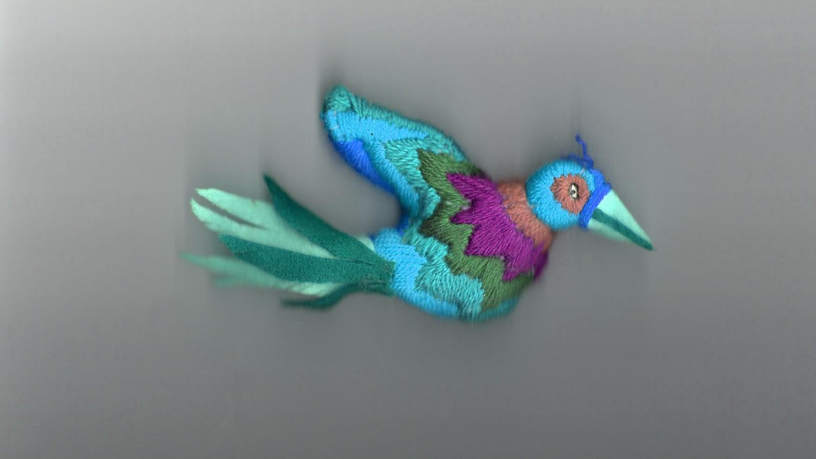 oiseaux-souci-4.jpg