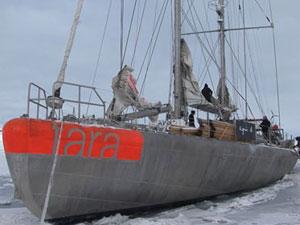 Tara voyage au coeur de la machine climatique: 14327_sans-titre.jpg