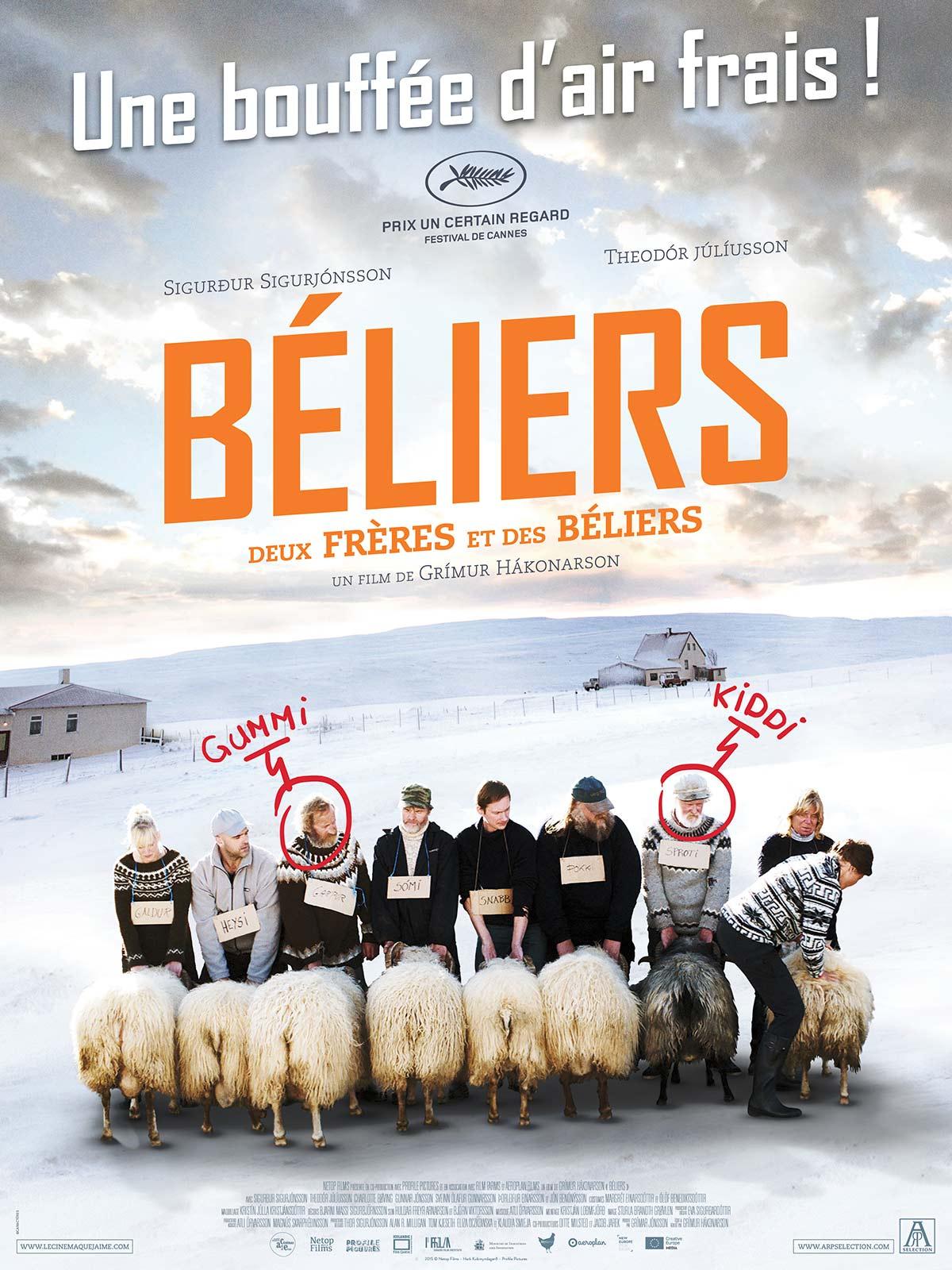 Béliers | Hákonarson, Grímur (Réalisateur)