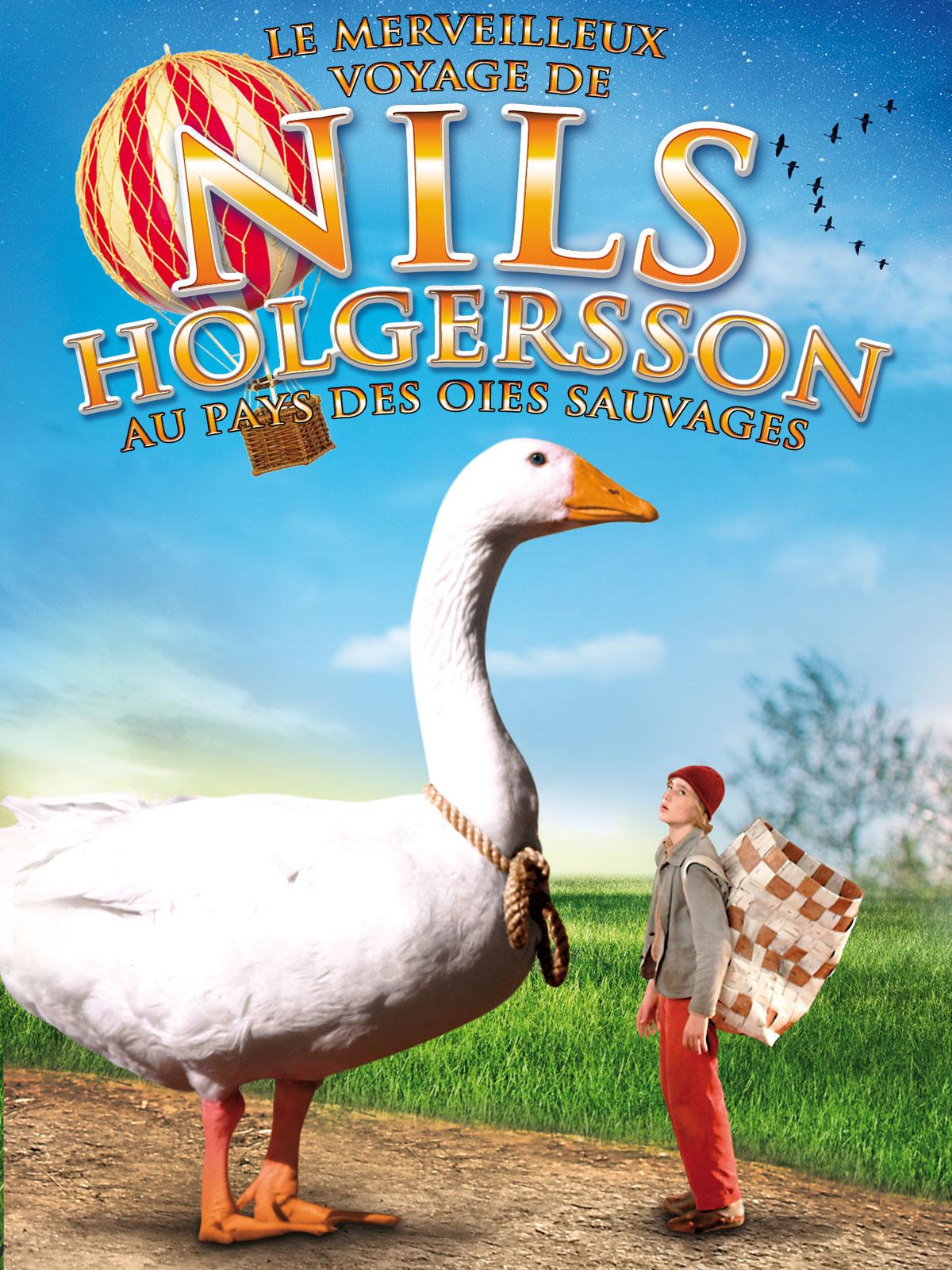 Le Merveilleux voyage de Nils Holgersson au pays des oies sauvages | Regel, Dirk (Réalisateur)
