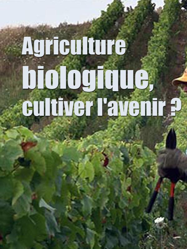 Agriculture biologique, cultiver l'avenir ? | Kunvari Et Jane Weiner, Anne (Réalisateur)