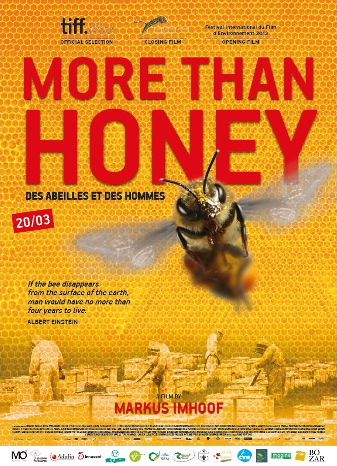 Film Fest Gent More Than Honey
