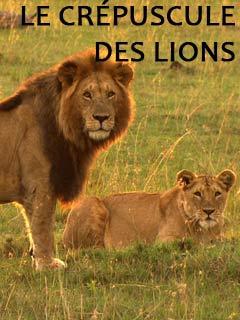 Le crépuscule des lions | Chopard, Stéphane (Réalisateur)