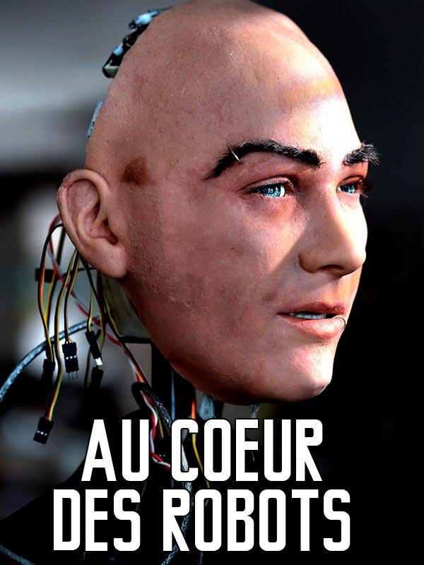 Au coeur des robots | Victor-Pujebet, Bruno (Réalisateur)