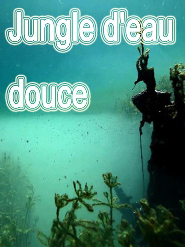 Jungle d'eau douce | Dumont, Serge (Réalisateur)