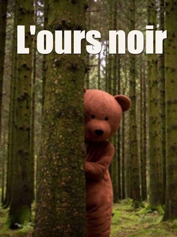 """Afficher """"L'ours noir"""""""
