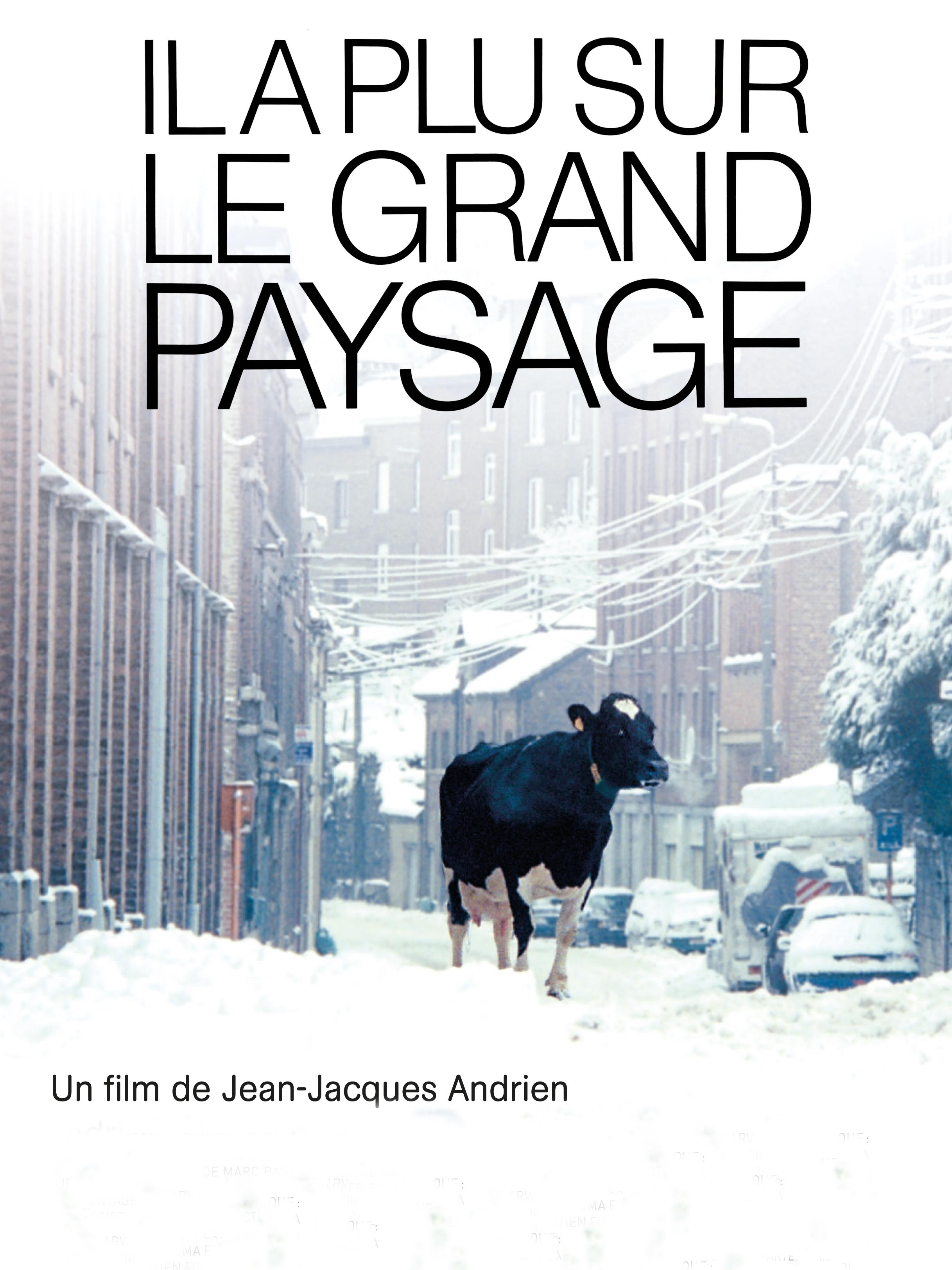 Il a plu sur le grand paysage | Andrien, Jean-Jacques (Réalisateur)