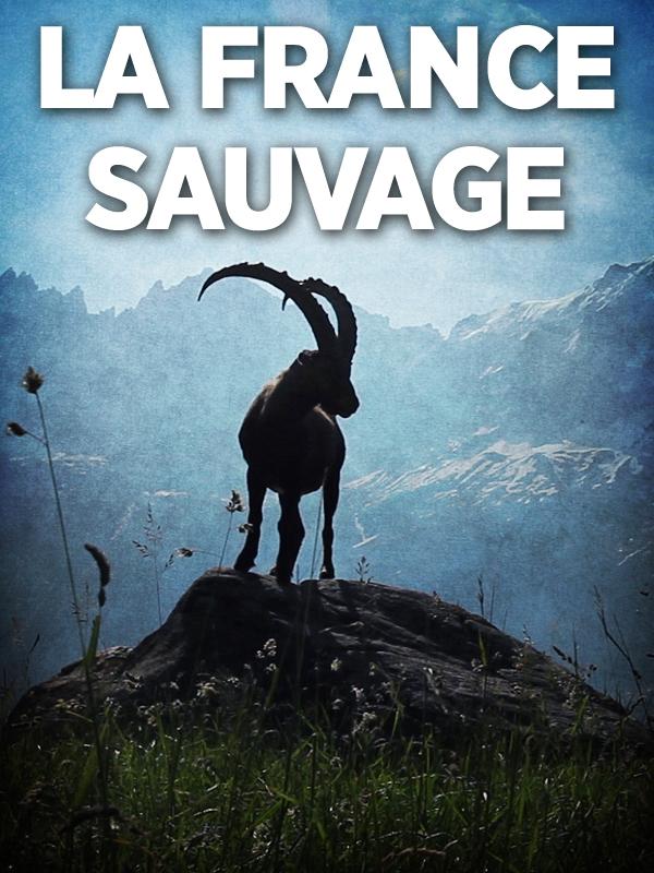 La France sauvage | Fevre, Frederic (Réalisateur)