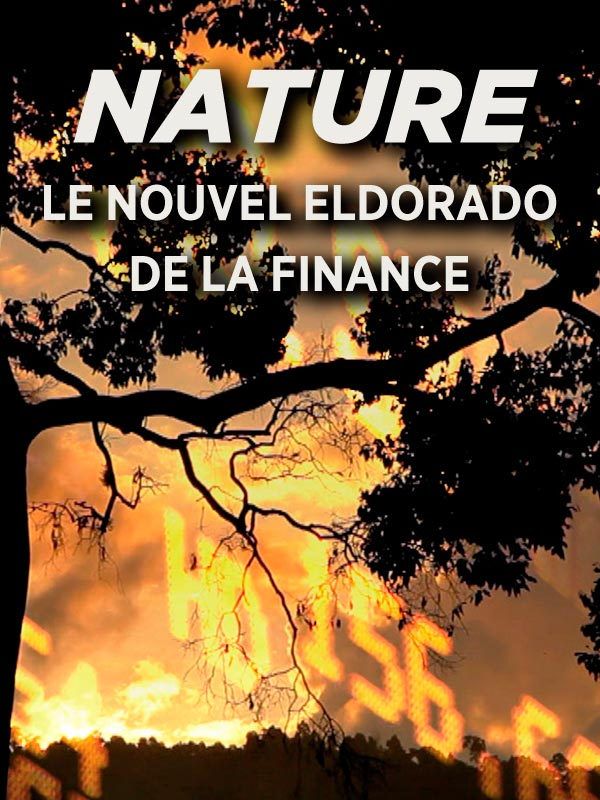 Nature, le nouvel eldorado de la finance |