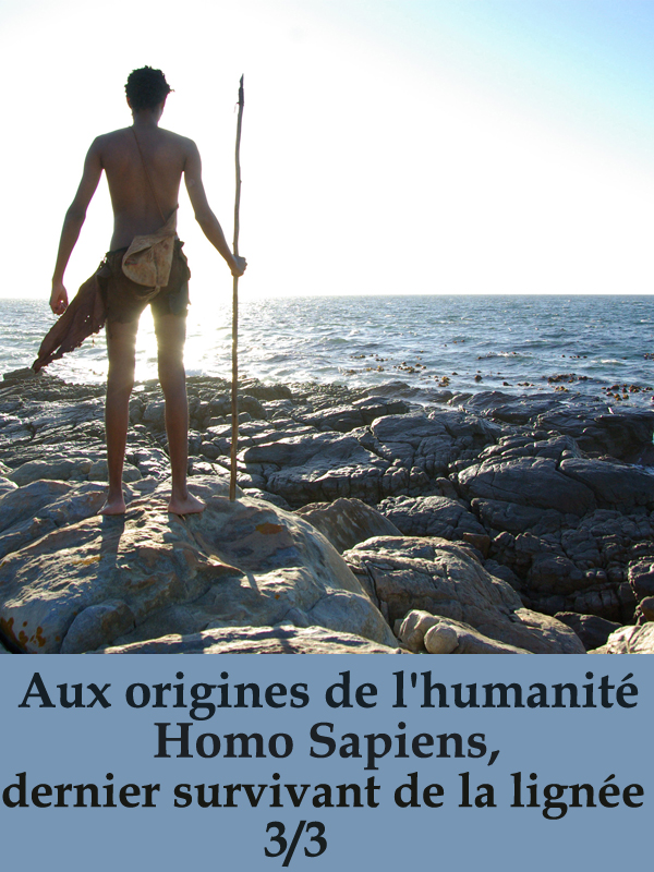 Aux origines de l'humanité 3/3 |