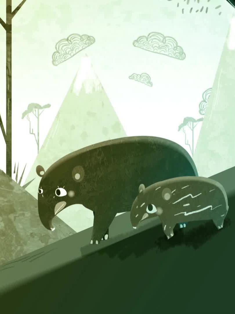 Pinchaque, le Tapir Columbien