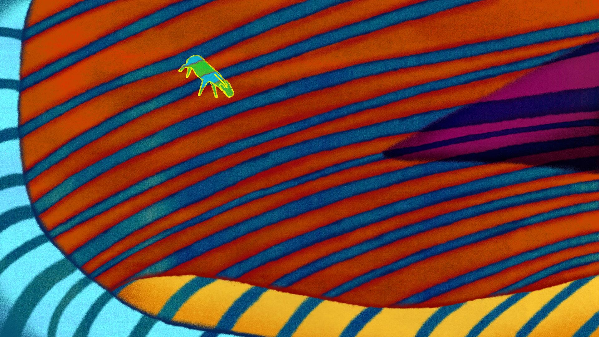 le-zebre-2.jpg