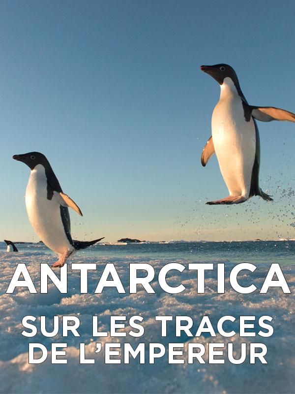 Antarctica, sur les traces de l'empereur | Bouvier, Jérôme (Réalisateur)