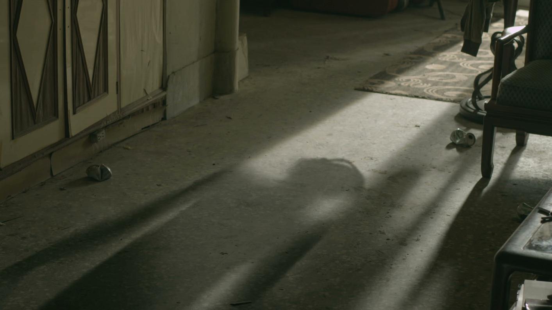 shadow-3.jpg