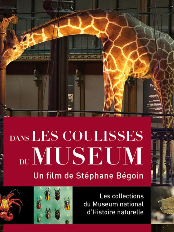 Dans les coulisses du Muséum | Bégoin, Stéphane (Réalisateur)