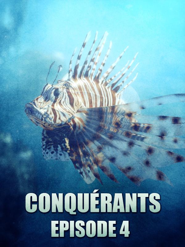 Conquérants - Le poisson-lion |