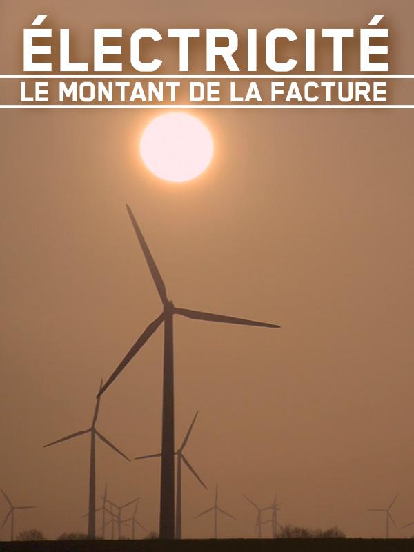 Electricité, le montant de la facture | Allégra Et Patrick Dedole, Cécile (Réalisateur)