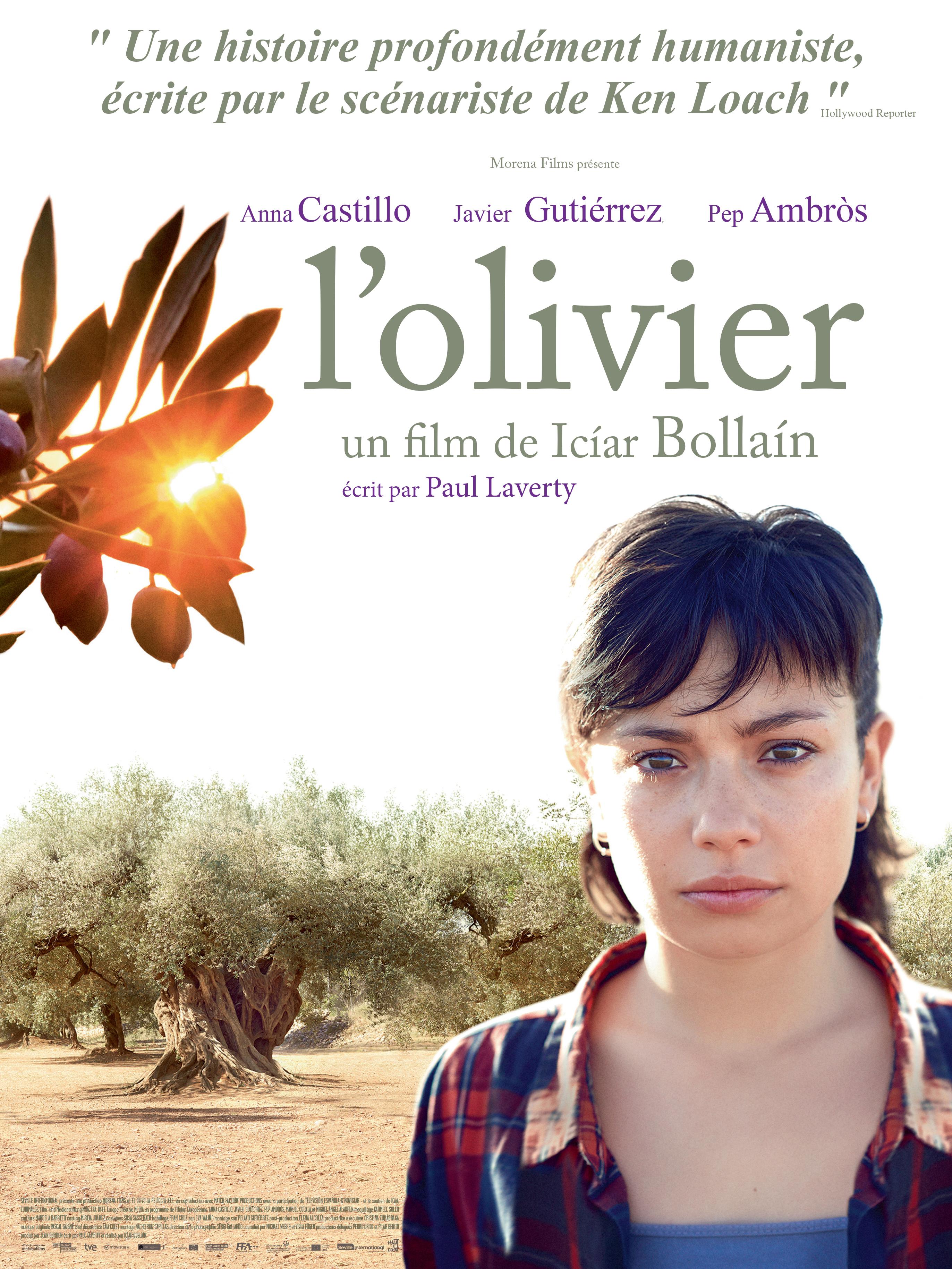 L'Olivier | Bollaín, Icíar (Réalisateur)