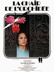 """Afficher """"La Chair de l'orchidée"""""""