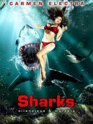 Sharks, silencieux et mortels