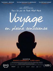 Voyage en pleine conscience