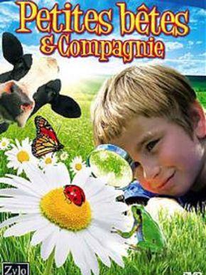 Petites Bêtes & Compagnie