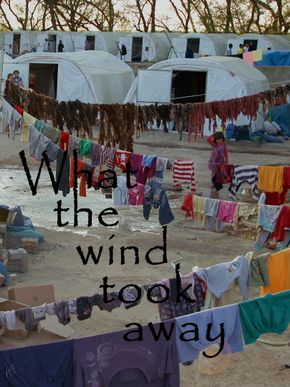 What the wind took away