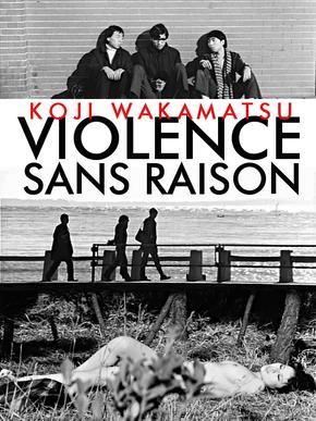 Violence sans raison