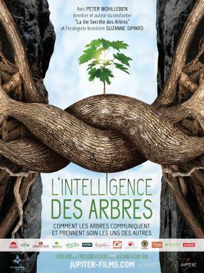 L'Intelligence des Arbres