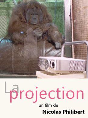 La Projection