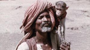 Inde, terre mère
