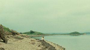 L'Île jaune
