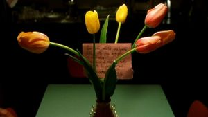 Pane e tulipani (Pain, tulipes et comédie)