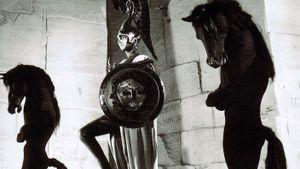 Le Testament d'Orphée