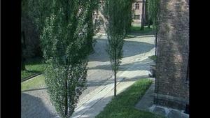 Auschwitz, un voyage d'affaires
