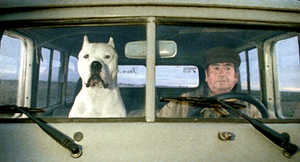 Bombón el Perro