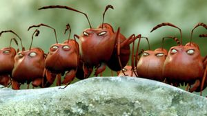 Minuscule, the Valley of Lost Ants
