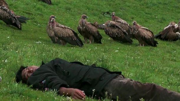Le Rappel des Oiseaux
