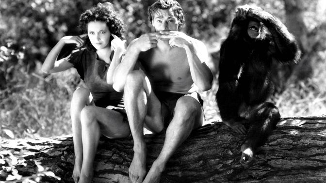 Movie pictures Tarzan, aux sources du mythe